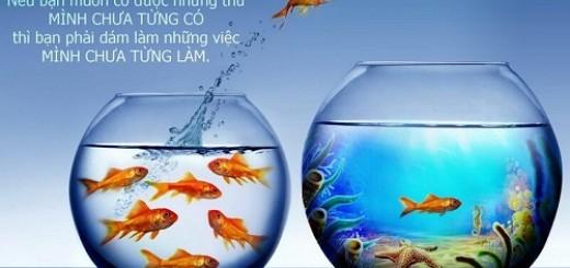 Đợi người cho cá không bằng tự mình câu cá